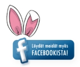 facebook_mainos