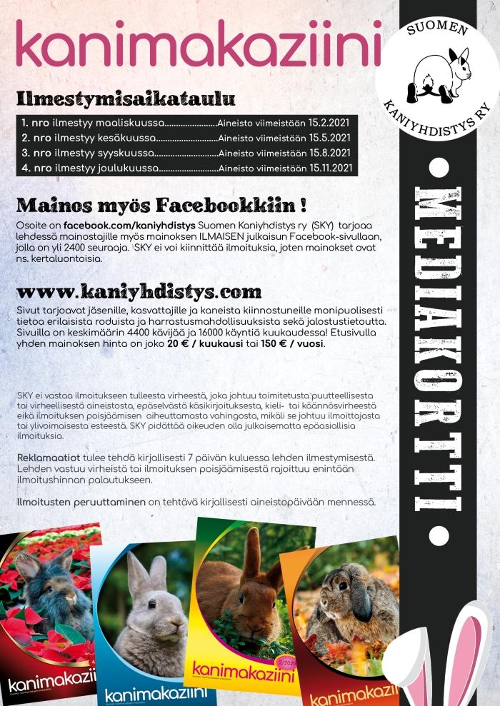 SKY-MediakorttiA4_sivu2
