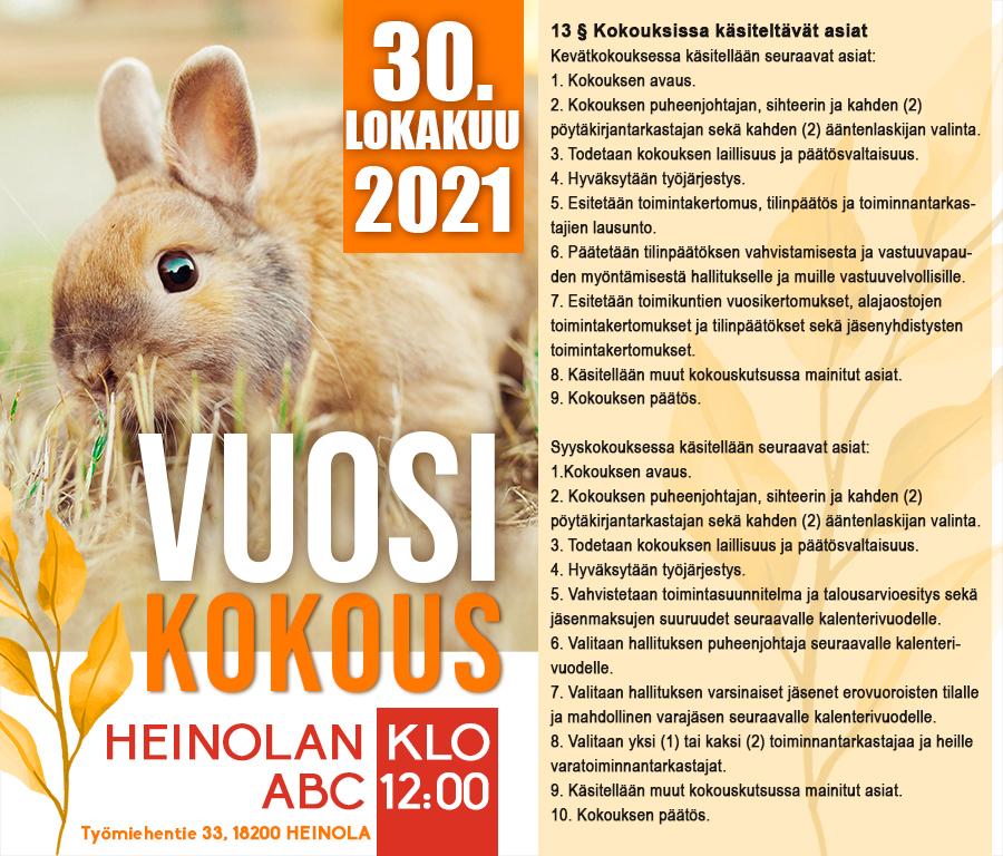 VuosikokousSKY2021